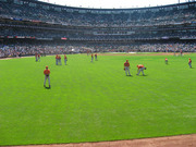 american_league_batting_practice.jpg