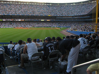 view_from_left_field2.jpg