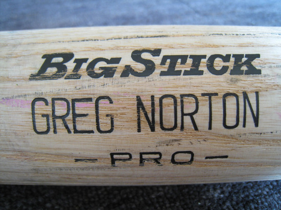 greg_norton_bat2.jpg