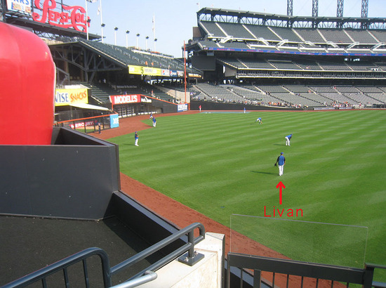 9_livan_hernandez_left_center_field.jpg