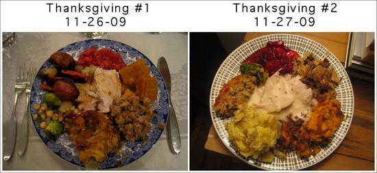thanksgiving_dinners_2009.jpg