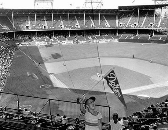 ebbets15_protective_netting.jpg