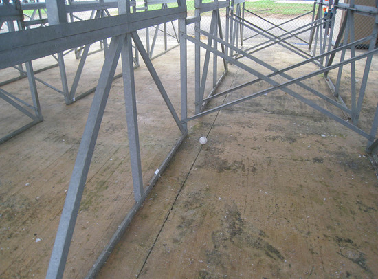 4_ball4539_under_bleachers.JPG