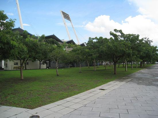 5_outside_hiram_light_towers.JPG