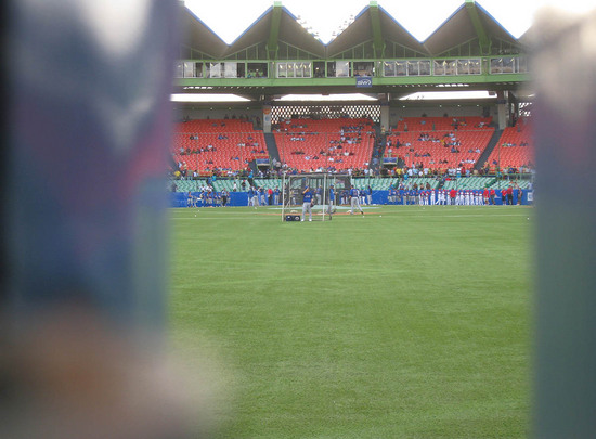 9_peeking_through_center_field_wall.JPG