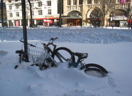 2010_blizzard4.JPG