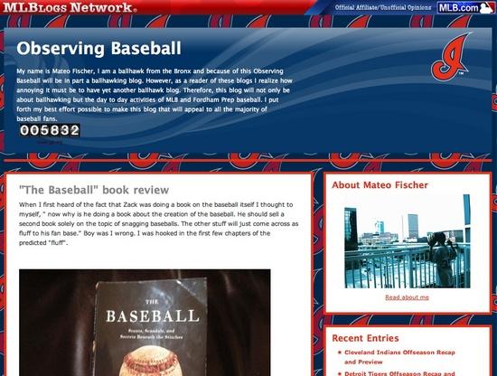 observing_baseball.jpg