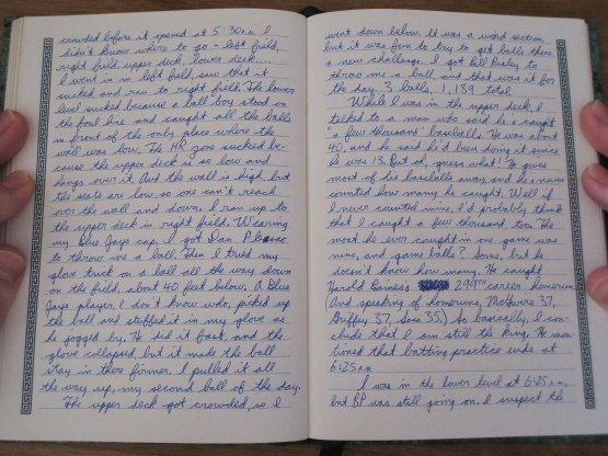 22_tiger_stadium_journal_entry