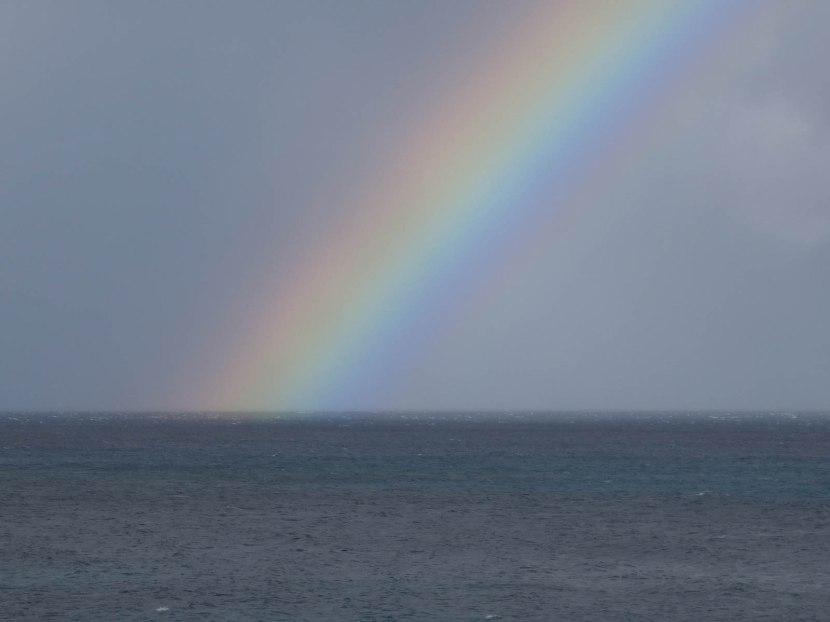 226_rainbow_closeup
