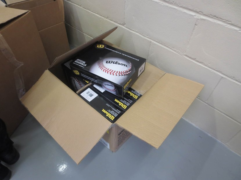 25_baseballs_donated_by_wilson