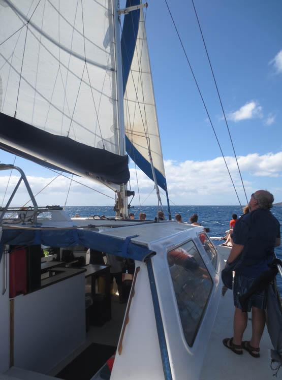 319_sails_up