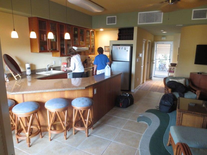 368_condo_kitchen