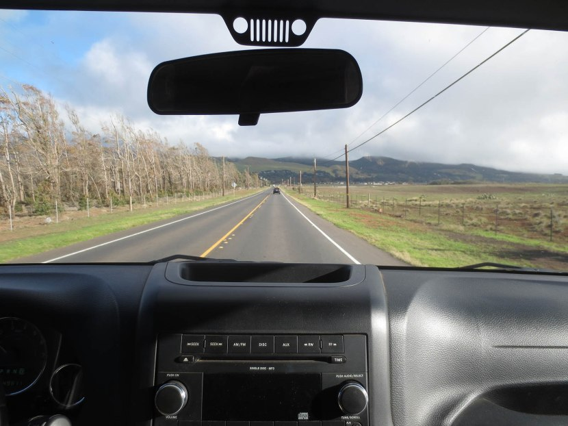477_driving_to_waimea