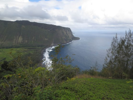 493_waipio_valley_lookout