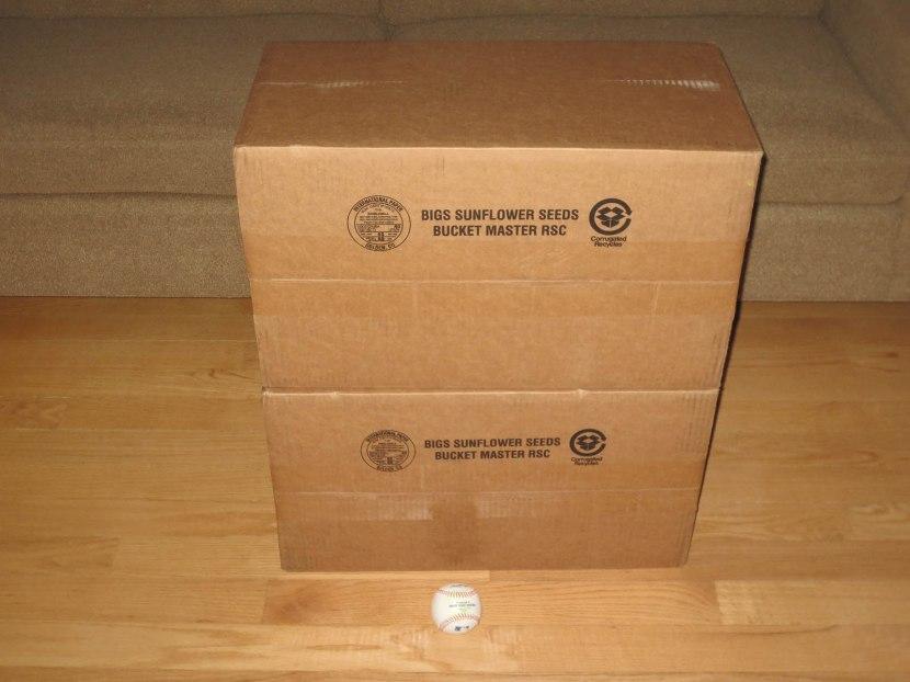 10_bigs_sunflower_seeds_shipment
