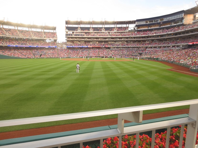 10_view_from_left_field_06_20_13