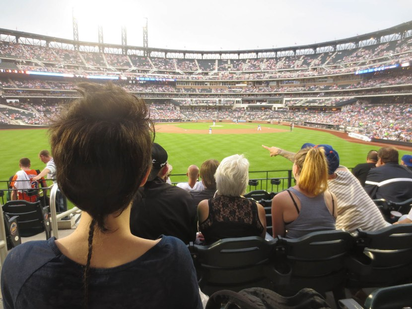 15_view_from_left_field_06_28_13