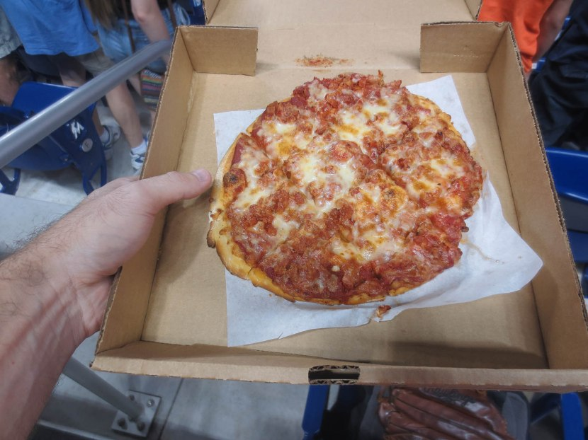 17_ten_dollars_for_this_small_shitty_pizza