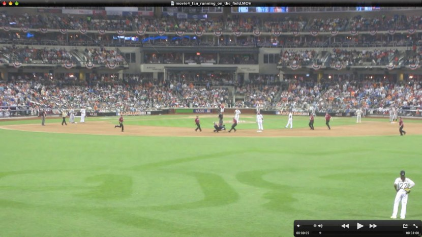 42_fan_running_on_field_07_16_13