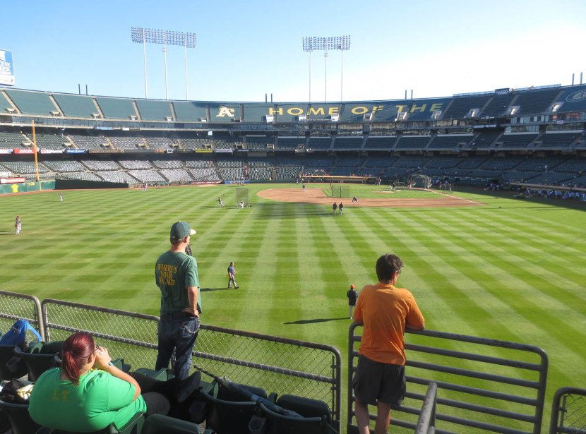 12_view_from_right_field_08_14_13