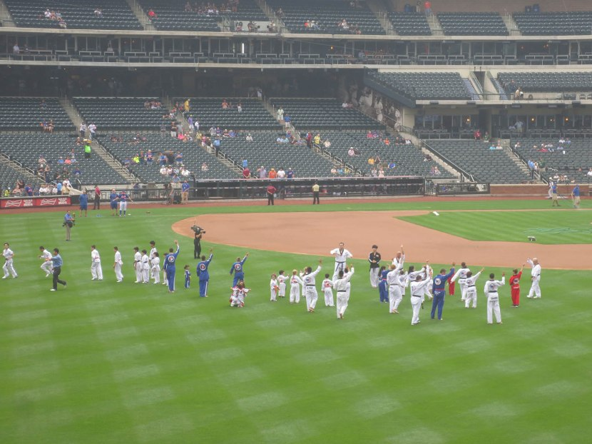 13_tae_kwon_do_in_the_outfield