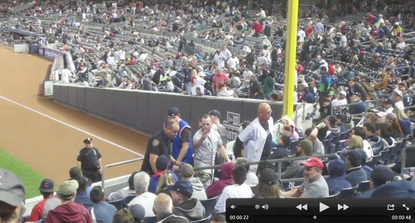 15c_fan_ejected_for_throwing_hat_on_field