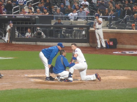 27_david_wright_hit_on_the_head