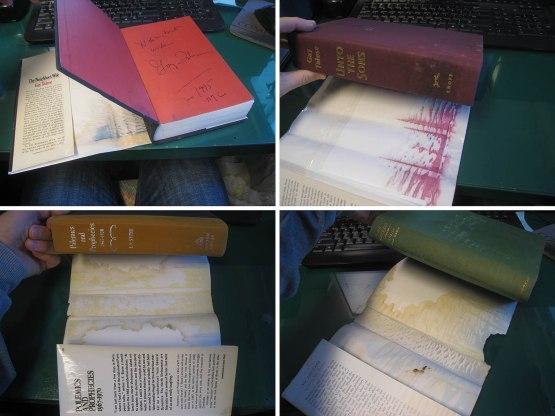 1_ruined_book