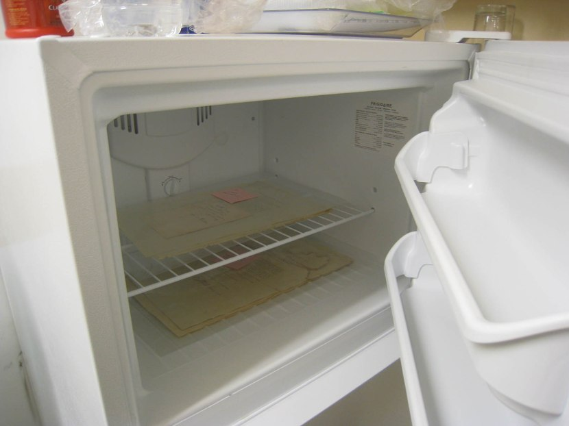 5_thomas_jefferson_documents_in_freezer_to_prevent_water_damage_from_expanding
