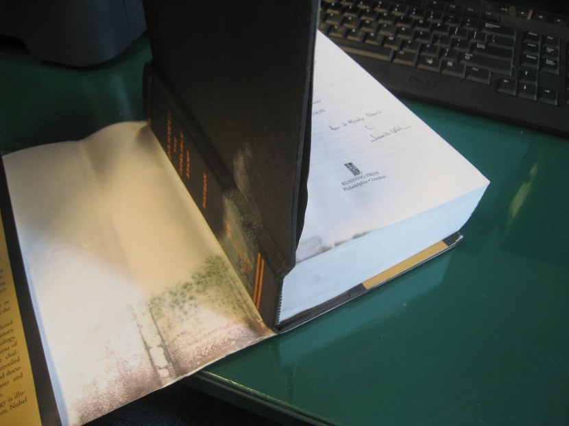8_ruined_book