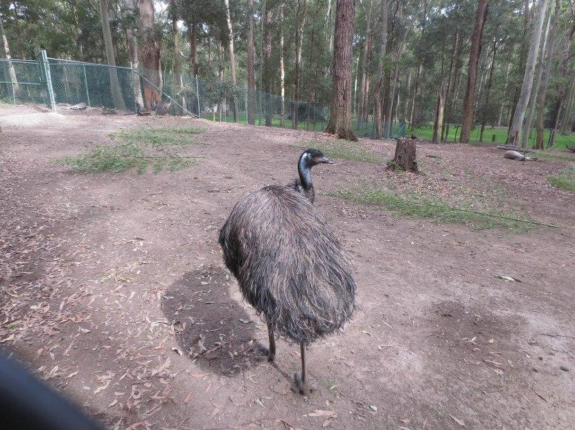 92_emu