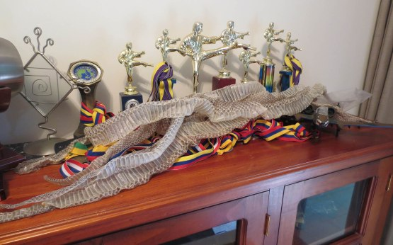 217_snakeskins_and_trophies