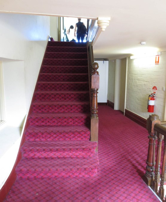 248_carpeted_staircase