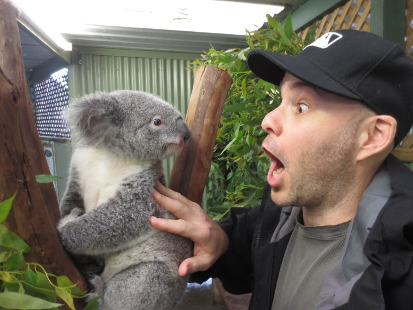 506_zack_bonding_with_a_koala