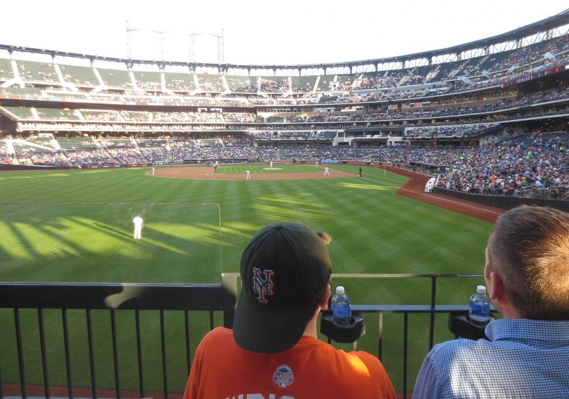 21_view_in_the_1st_inning_06_24_14