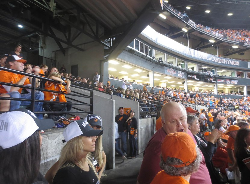 21_crowd_behind_home_plate