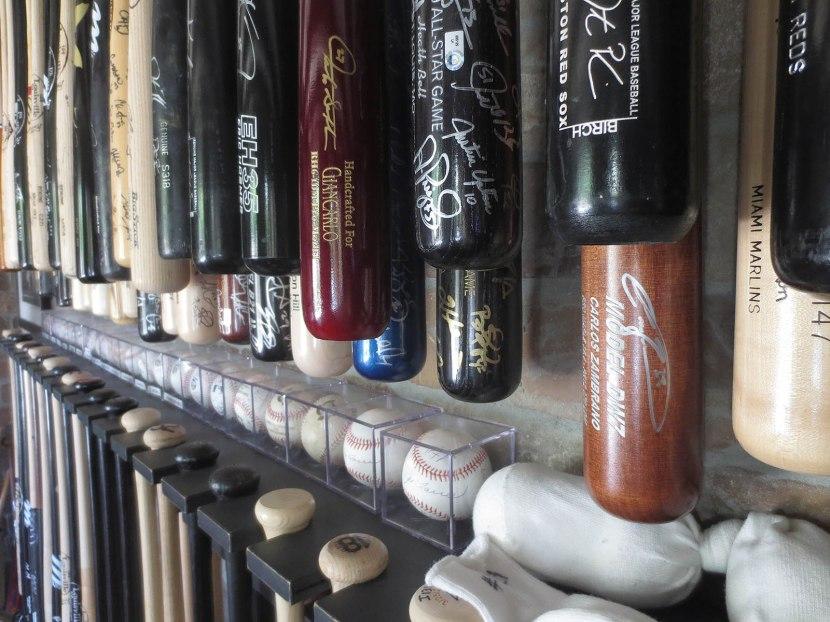 3_bats_closeup