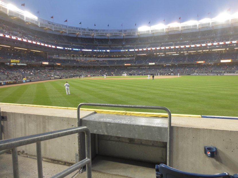 13_view_during_game_04_08_15