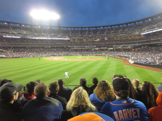 24_view_from_left_field_04_14_15