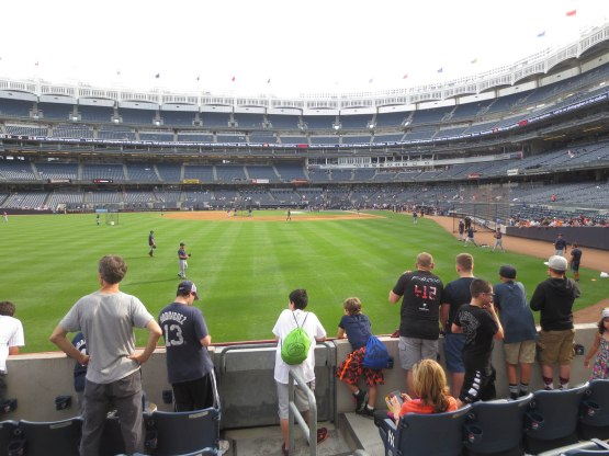 4_view_from_left_field_during_bp_06_19_15