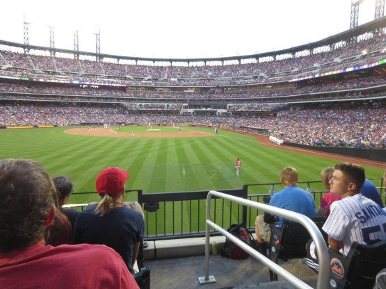 19_view_from_left_field_during_the_game_08_01_15