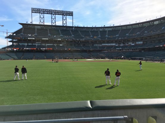 9_view_from_left_field_06_14_16