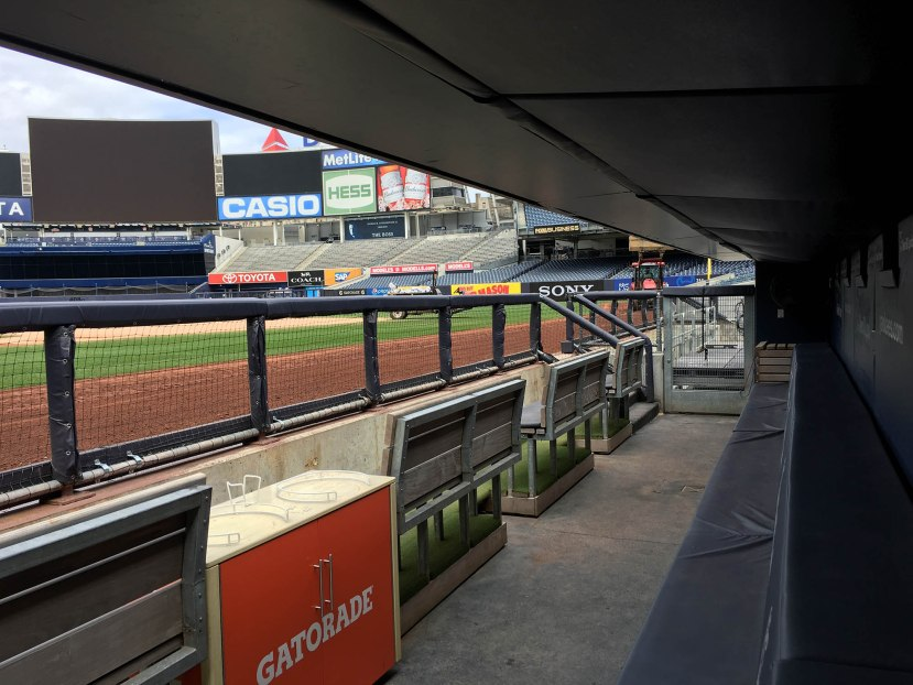 19_view_from_the_yankees_bench